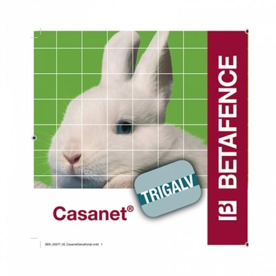 Casanet-3