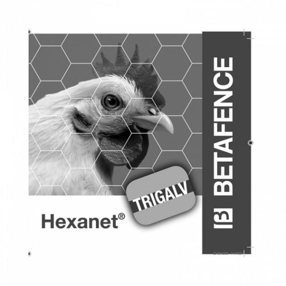 Hexanet-2